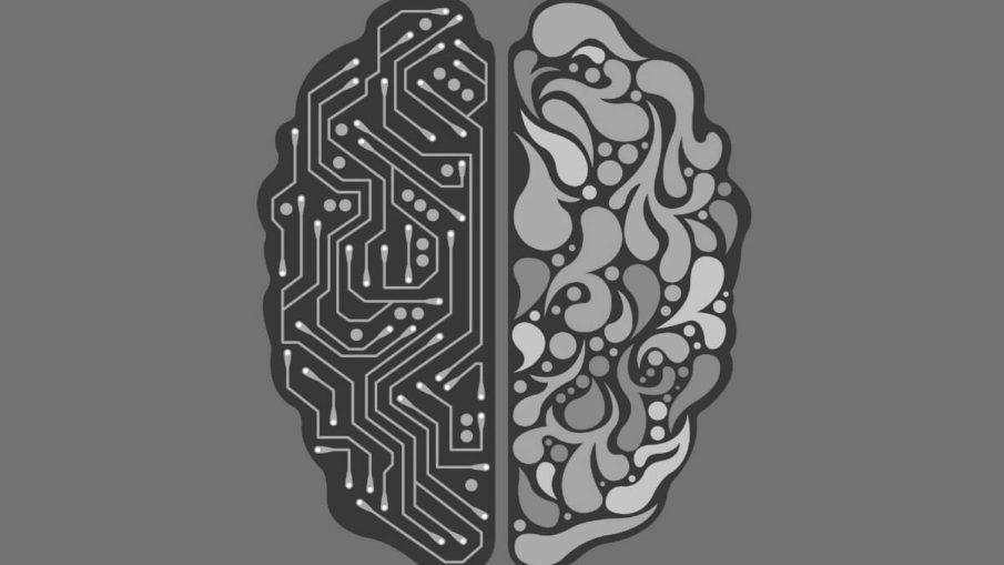 Qini - A Natural Language Question Answering Platform